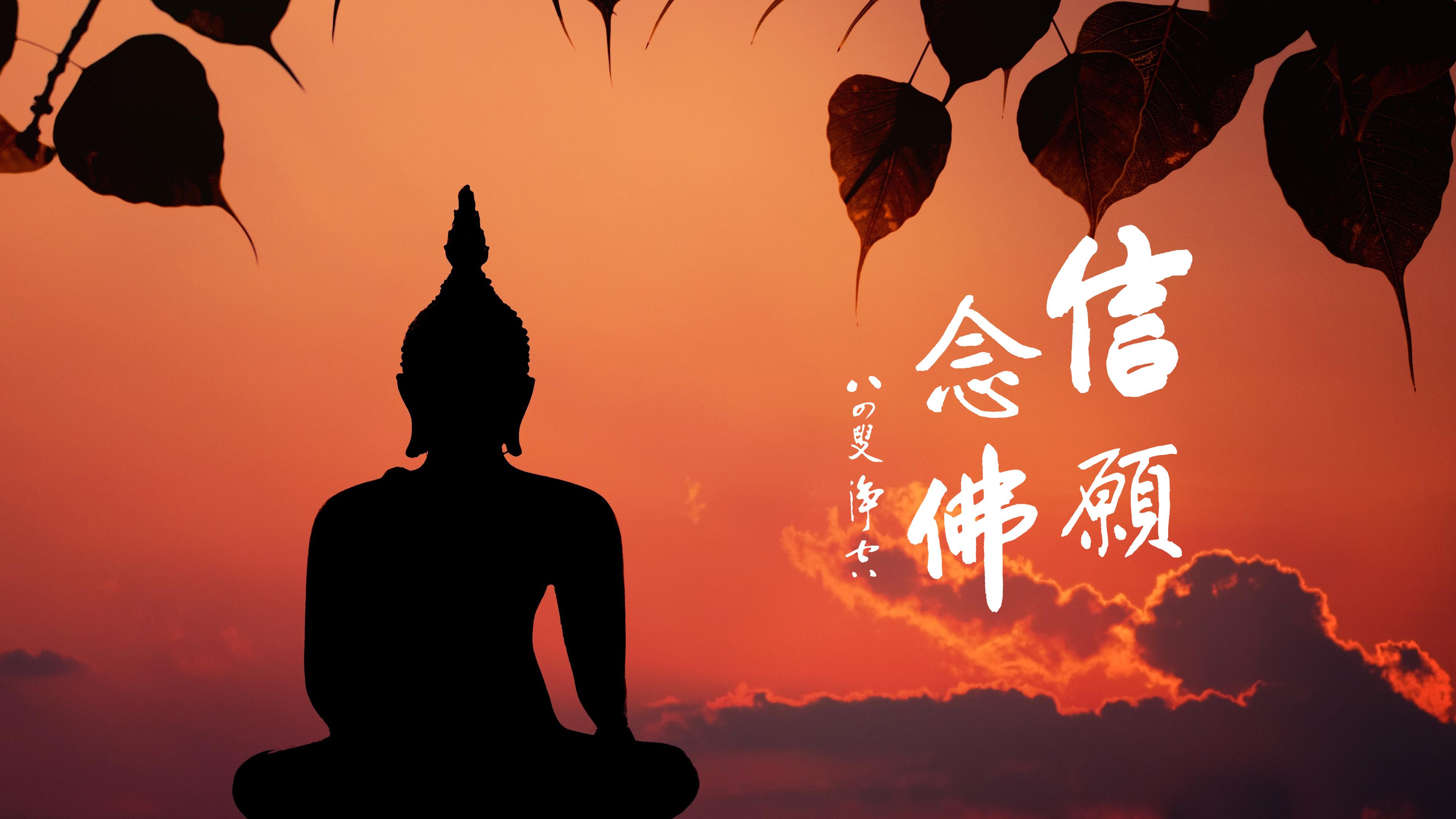 念這一句阿彌陀佛這是佛種-第620集